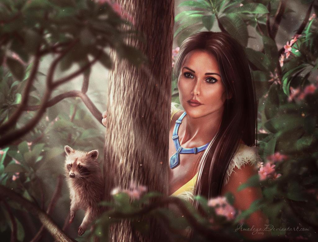 Pocahontas by Amedeya