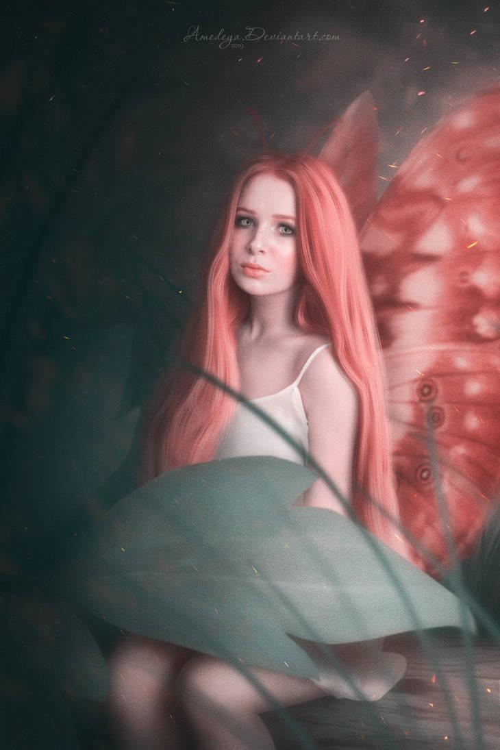Butterfly by Amedeya