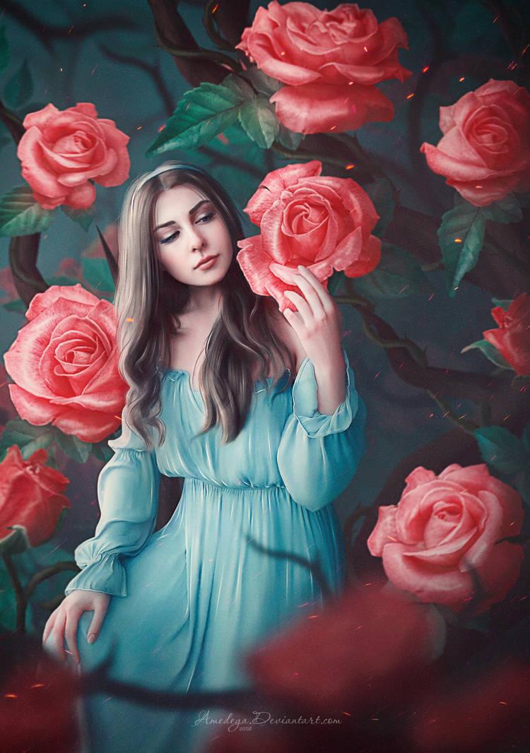 Rose Garden (Alice) by Amedeya