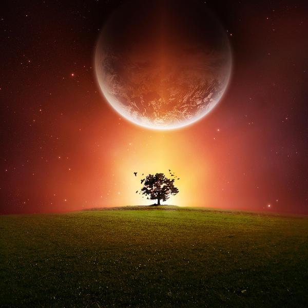 Cosmic Tree by Ymntle-Aleoni