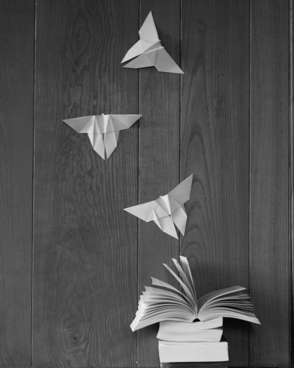 The Butterfly Book by Ymntle-Aleoni
