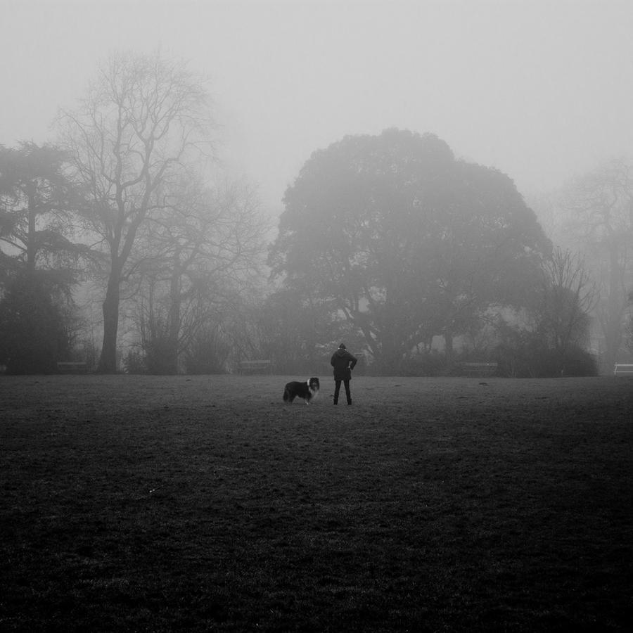 Man's best friend by Ymntle-Aleoni
