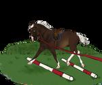 Trotting Poles (breeding payment)