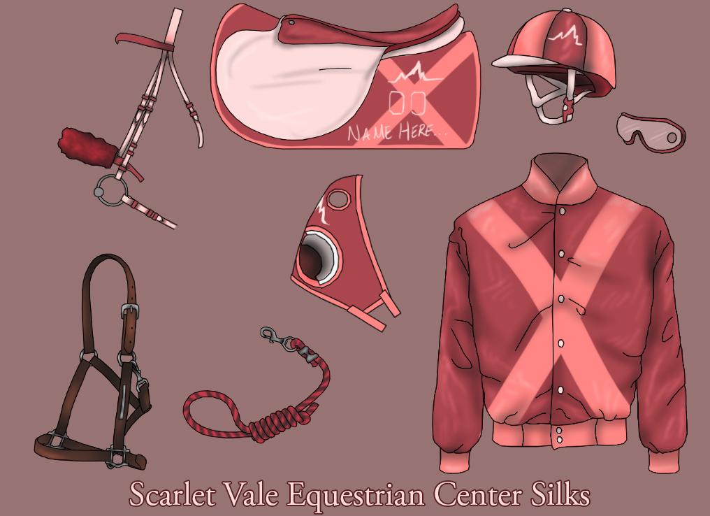 jockey silks template - svec officals silks by bink18 on deviantart