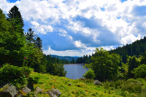 Vosges (1) by FOREVER54