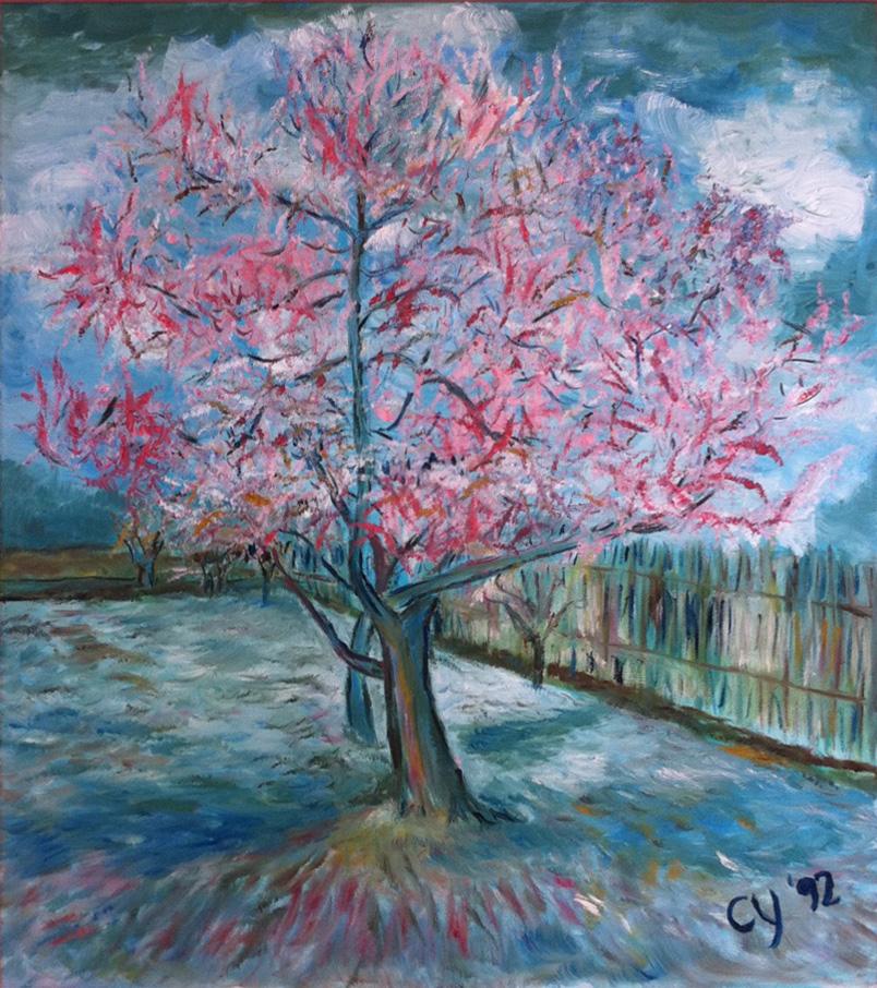 Peach Trees in Blossom by CarolynYM on DeviantArt