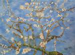 Almond Blossom in Oil