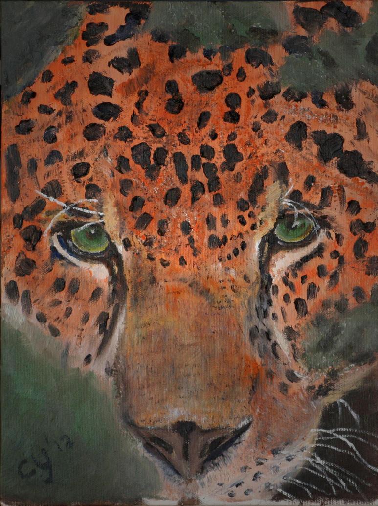 Leopard by CarolynYM