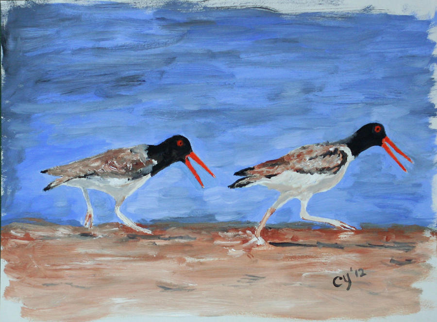 Oystercatchers by CarolynYM