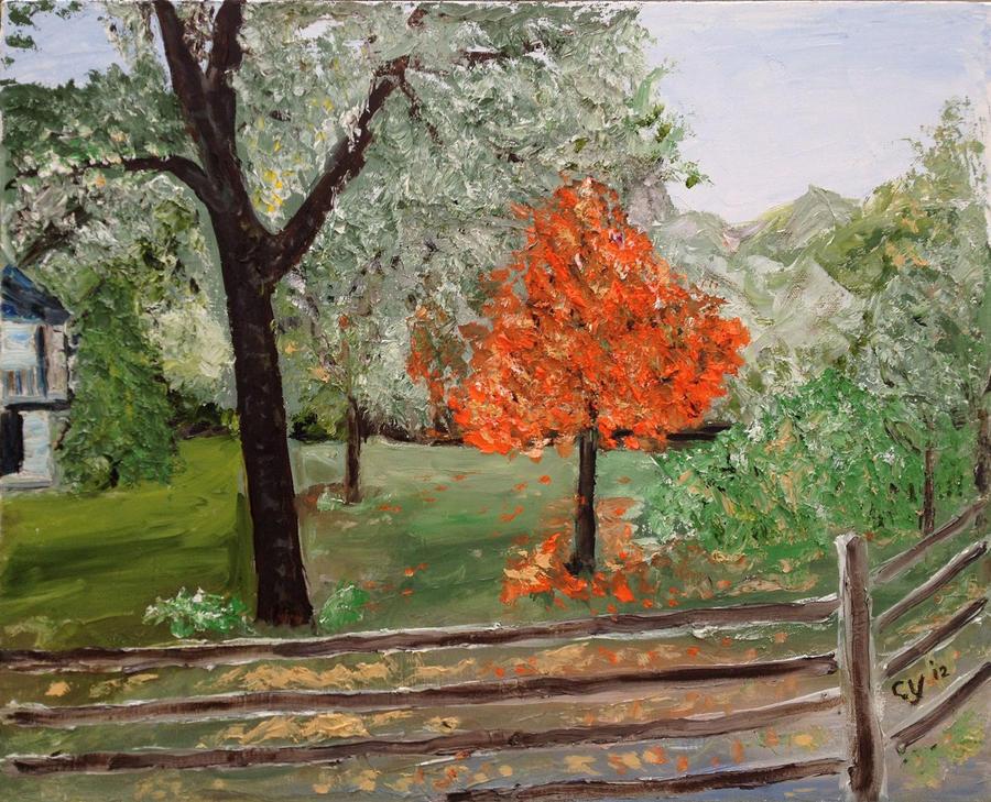 Orange Tree by CarolynYM