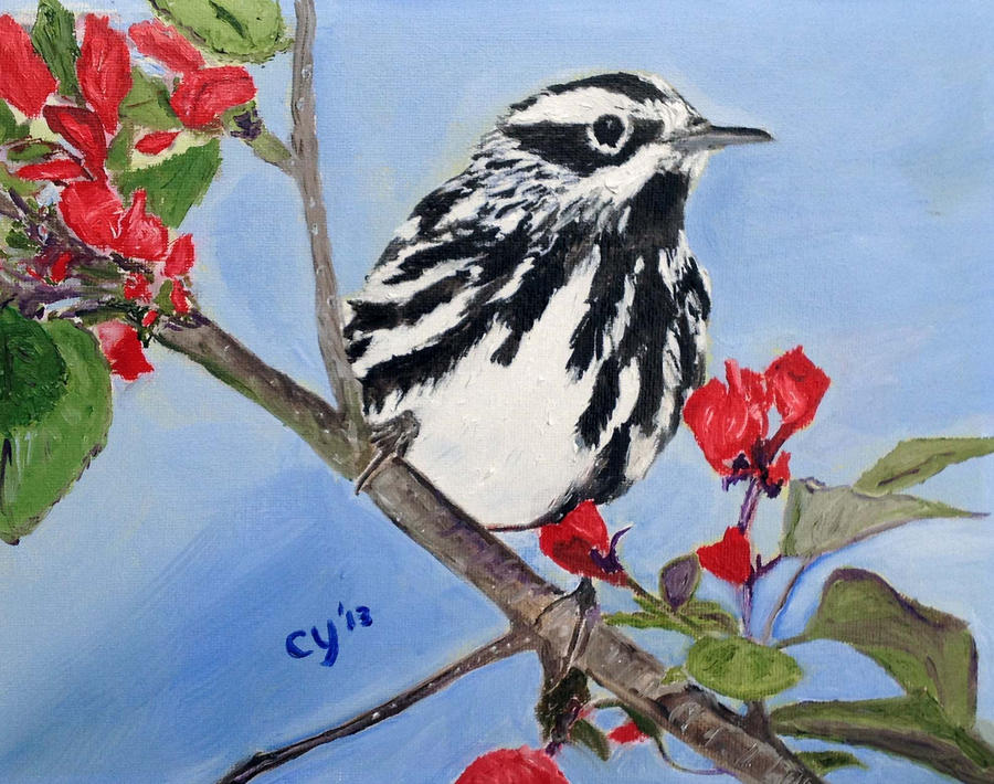 Black and White Warbler by CarolynYM
