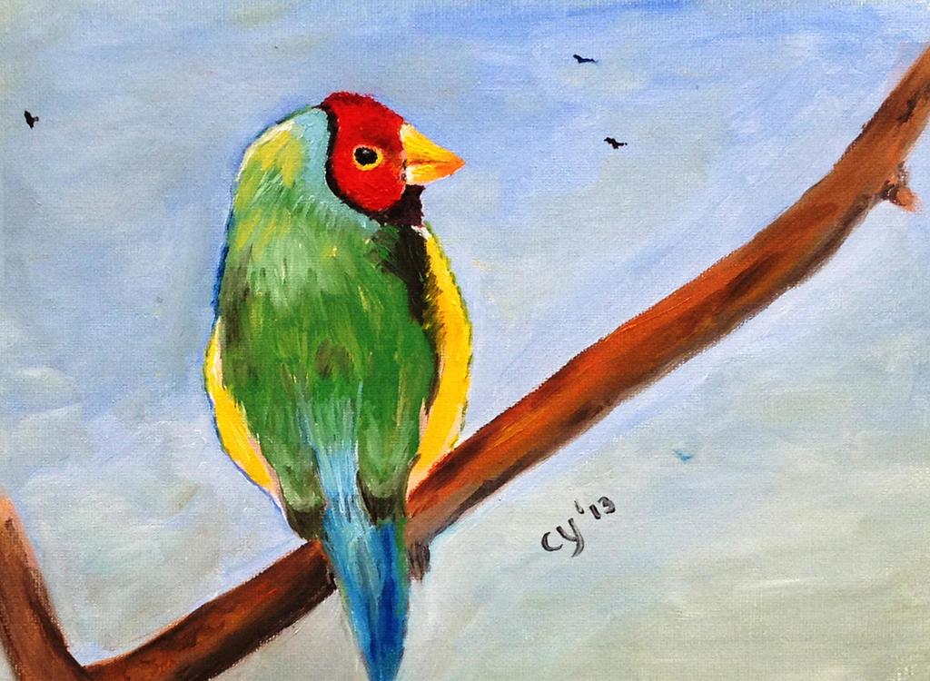 Gouldian Finch by CarolynYM