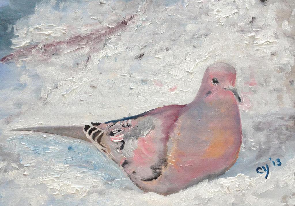 Mourning Dove by CarolynYM