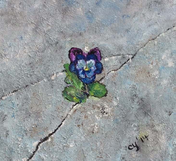 A Pansy Flower in Concrete by CarolynYM