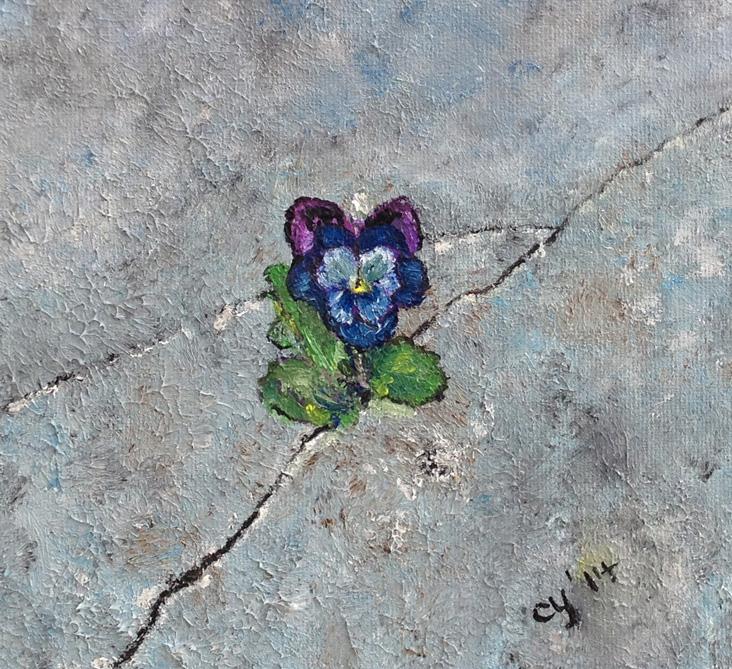 A Pansy Flower in Concrete by CarolynYM