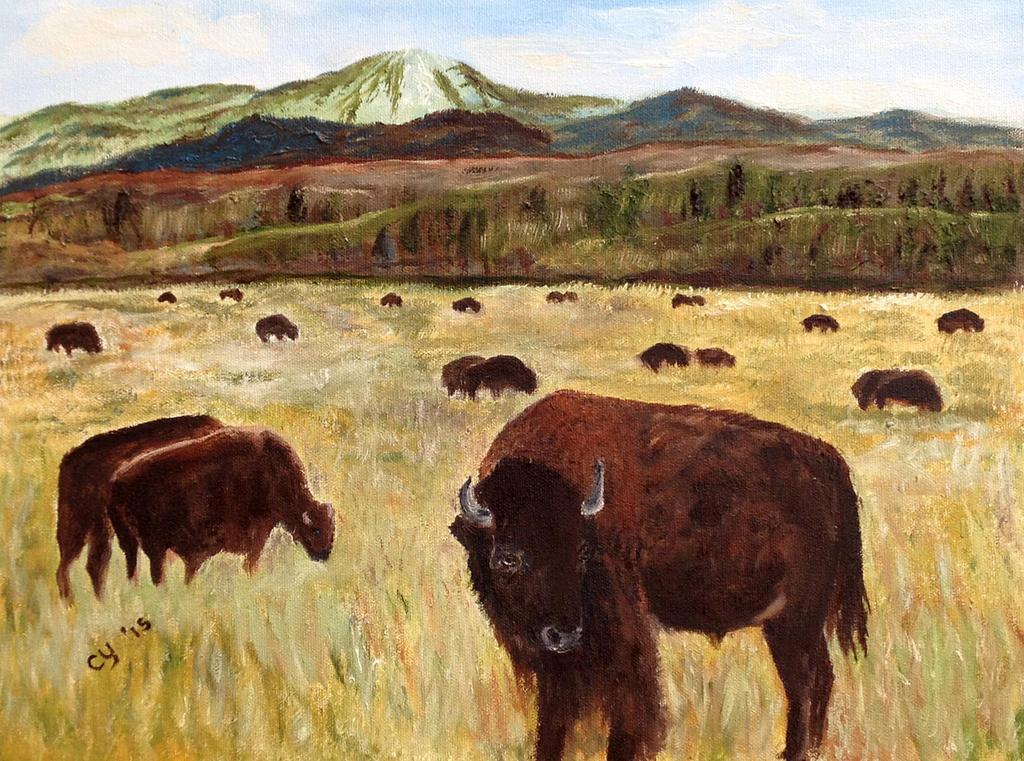 Wyoming Bisons by CarolynYM