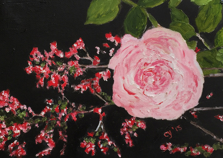 Jintao's Pink Rose by CarolynYM
