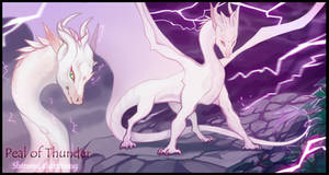 AUCTION ADOPT (CLOSED) Peal of Thunder