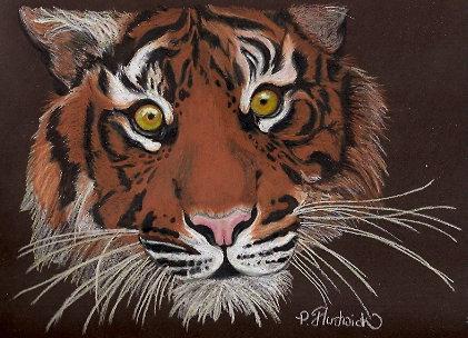 Siberian Tiger by peridot-phoenix