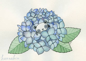There's Something in the Hydrangeas by Hannakin