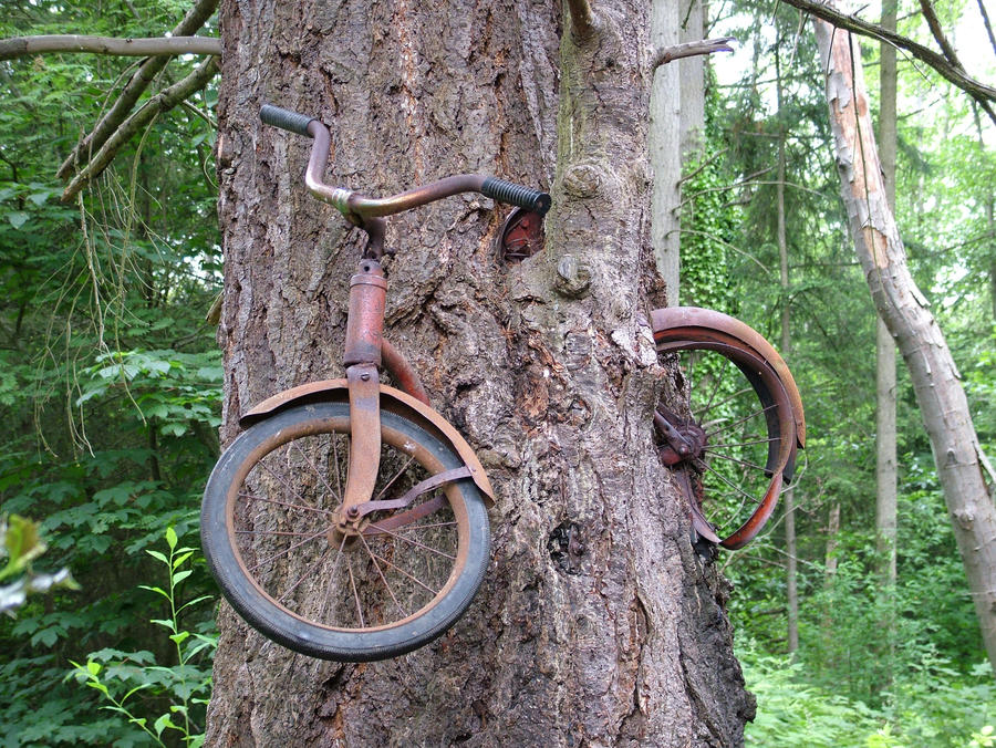 Bike Inside Tree by sushi-robots