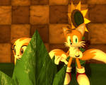 Where is Tails?