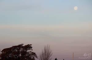 Morning full moon. by Ali-SR