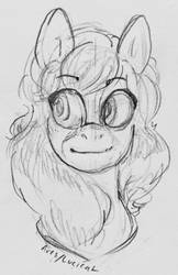 Sketch Bust Commission for GeneralDurandai by forestsap