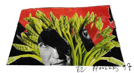 Lynch asparagus