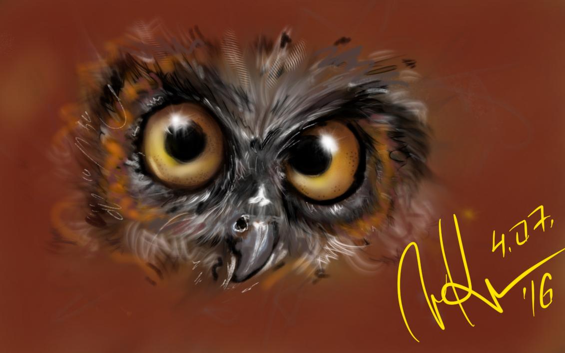 owl by pinkfan777