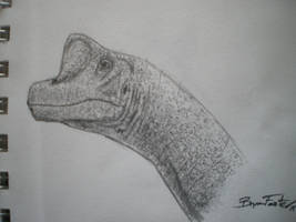 Giraffatitan by DinoHunter000