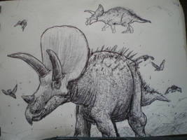 Triceratops by DinoHunter000
