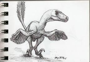 Raptor by DinoHunter000