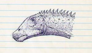 Apatosaurus Sketch by DinoHunter000