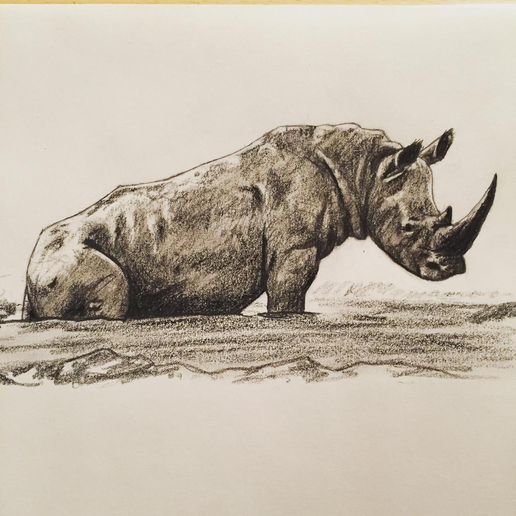 Rhino sitting on its behind-o.  by DinoHunter000