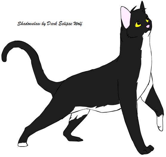 broken cat tail