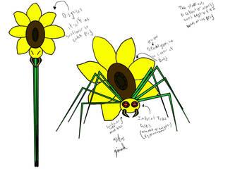 Sun Spider by Probe100