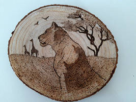 Lioness - Pyrography
