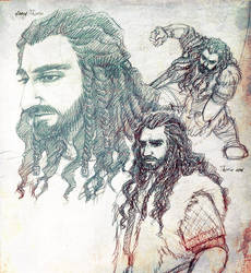 Thorin - sketches by IrbisN