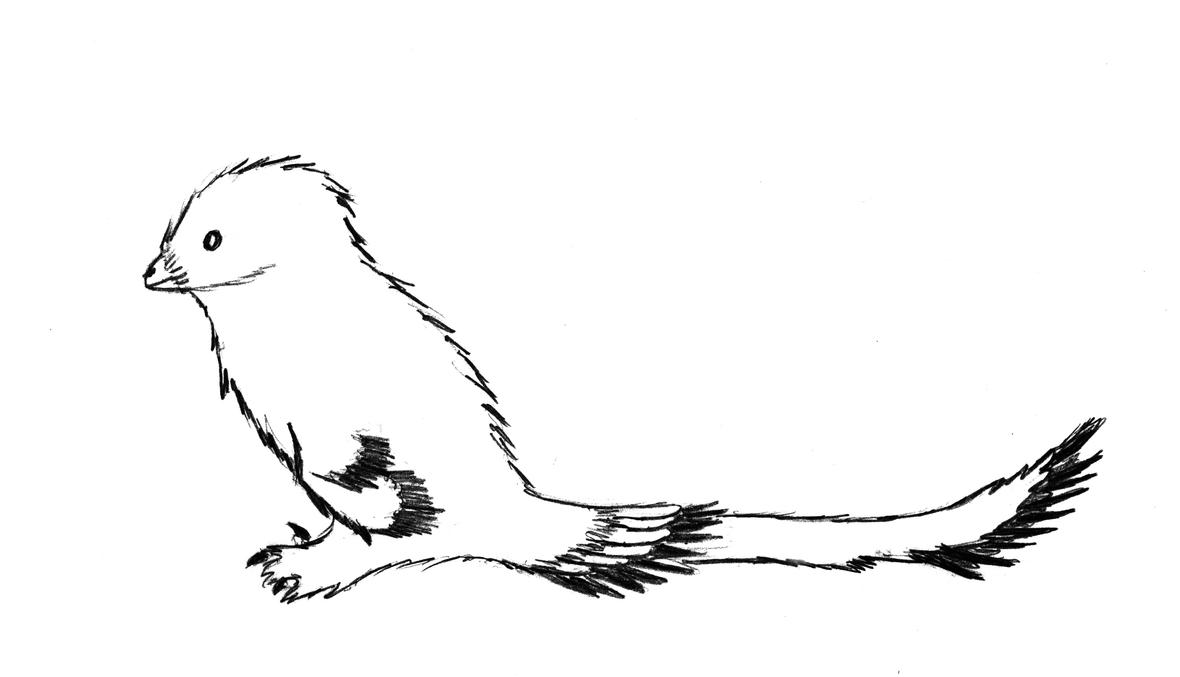 Troodon by Sinornithosaurus