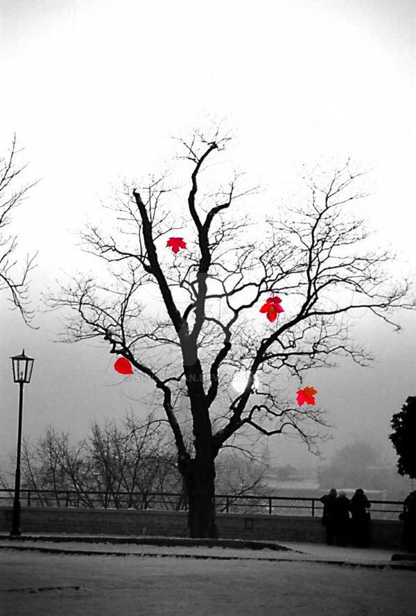 Red Winter by SinCityFan