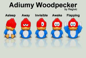 Adiumy Woodpecker