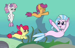 Swimming with the CMCs