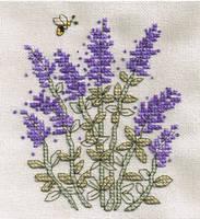 Lavender Cross Stitch by susanjrobinson