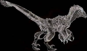 Variraptor sketch by Durbed