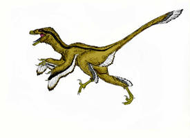 Dromaeosaurus 2.0 by Durbed