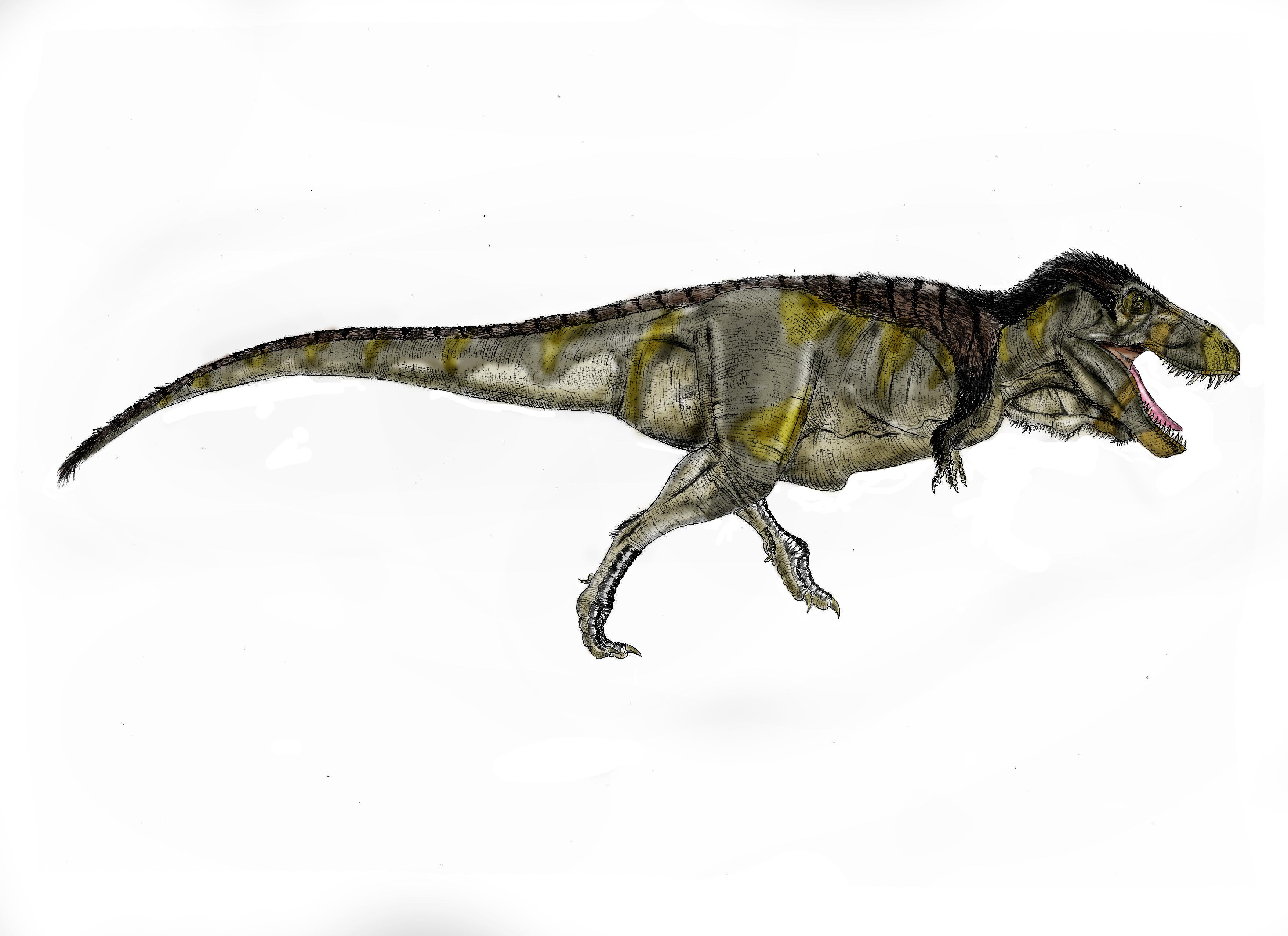 General off topic thread dr longicollum presents a for Tyranosaurus
