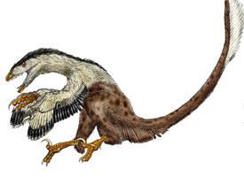 Deinonychus antirrhopus by Durbed
