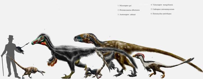 Dromaeosaur parade