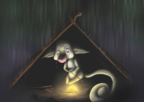 Possum finds a Home 3